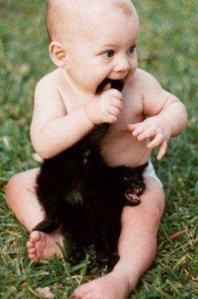 Mmmm, kitten.