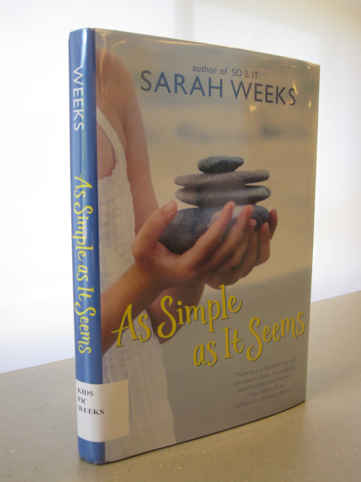 Book Review As Simple As It Seems By Sarah Weeks border=